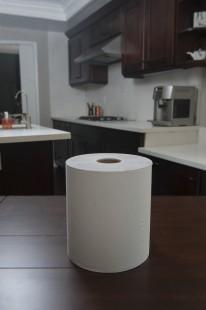 Paper Towel, Hardroll - White